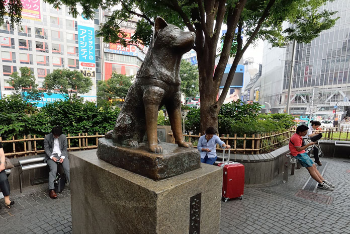 Hatchiko