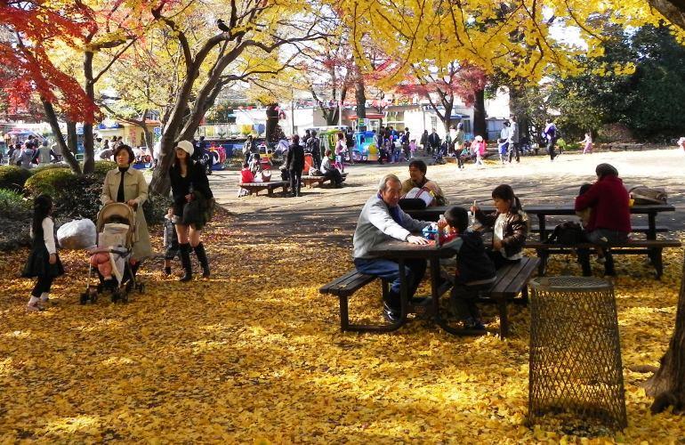 Parque Inokashira Outono