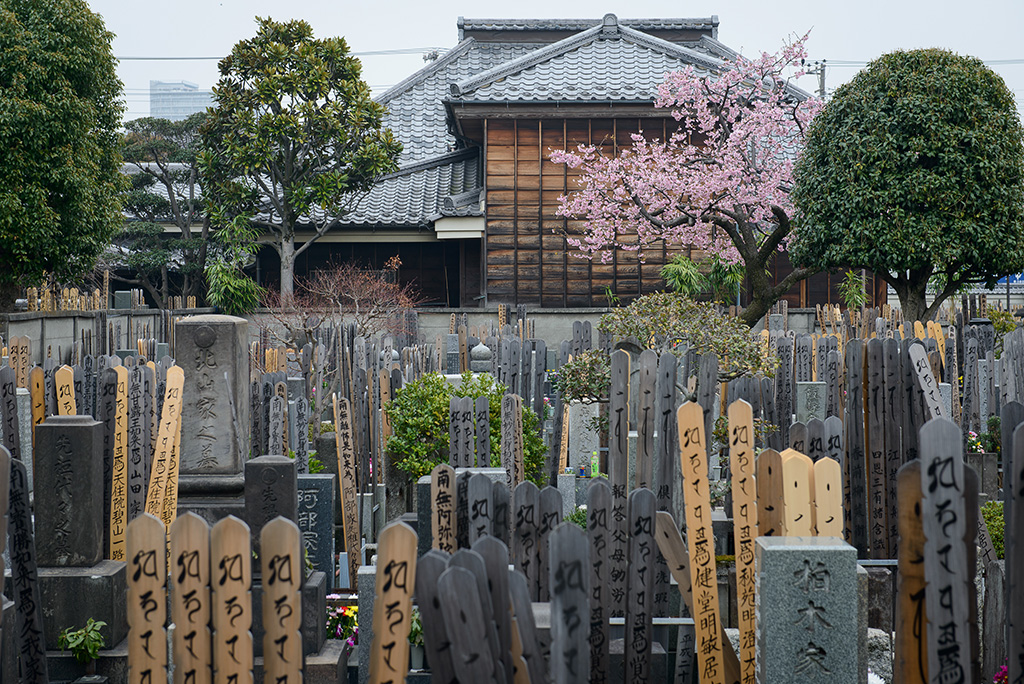 cemitério de Yanaka no Japão