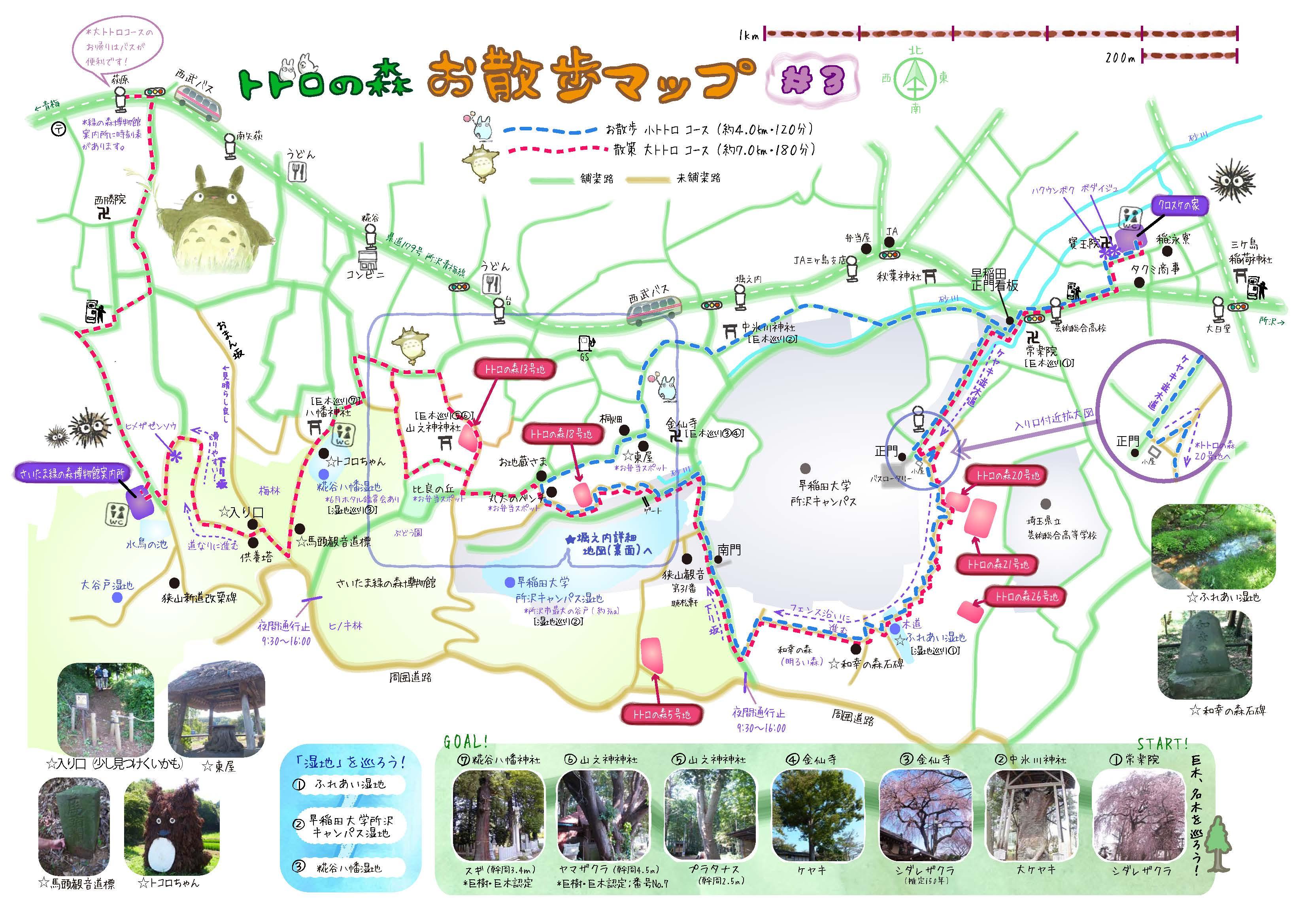 Mapa Totoro Forest