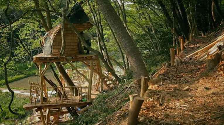 casa na árvore de Takeshi no Japão