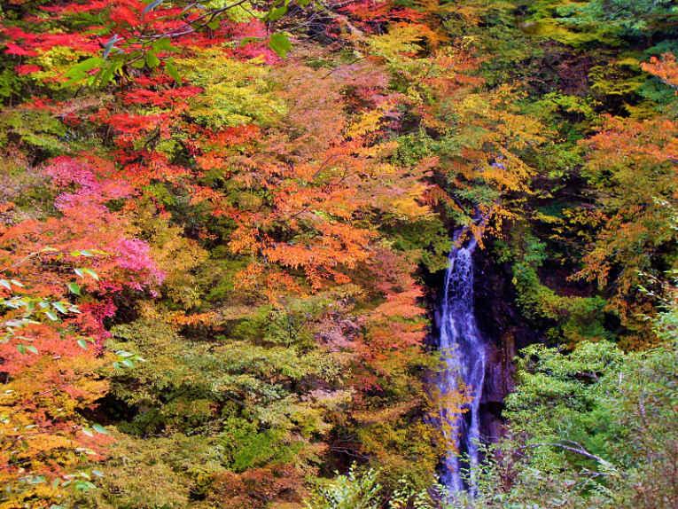 Nishizawa no outono
