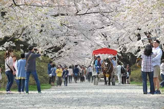 Parque Tenshochi