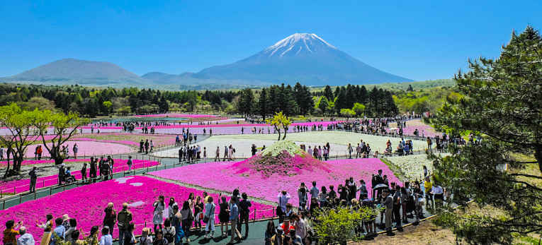 Festival Fuji no Japão