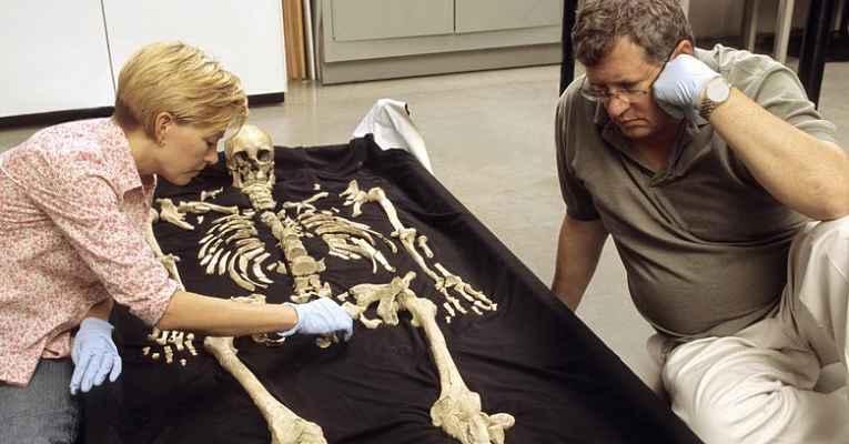 Esqueleto pré histórico