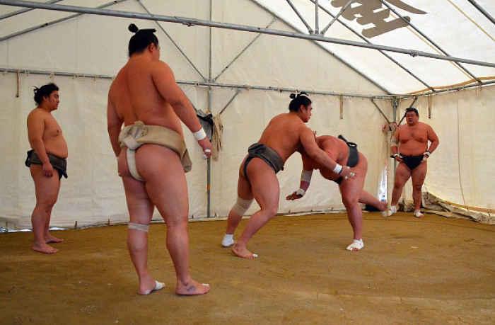 Lutadores treinando