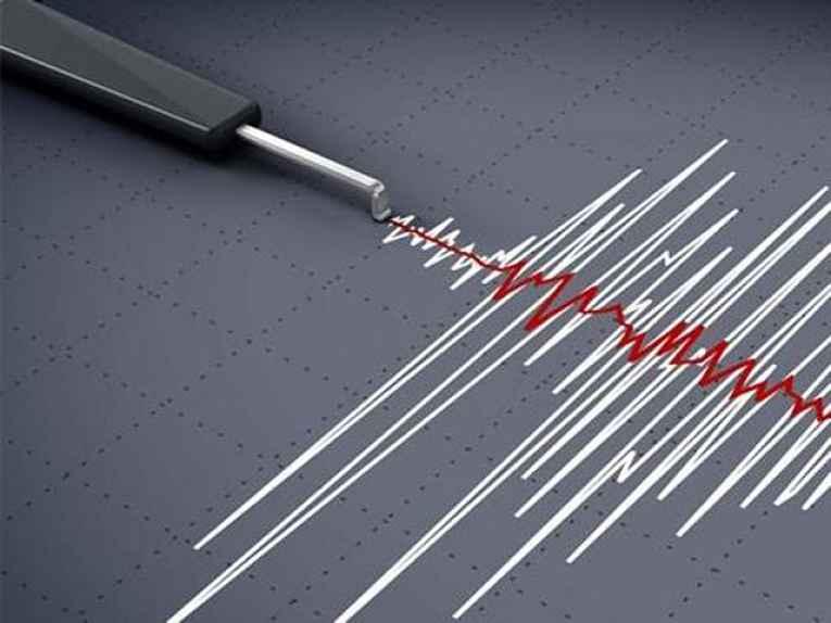 Gráfico sísmico