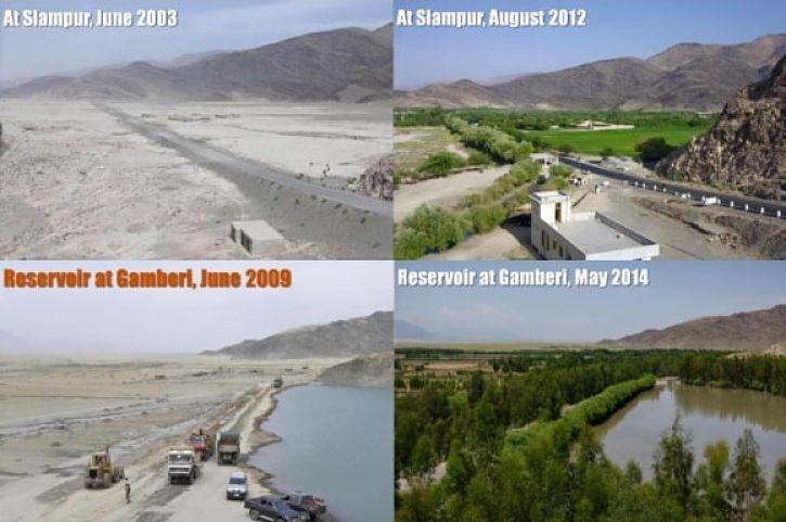 Shampur e Gamberi antes e depois
